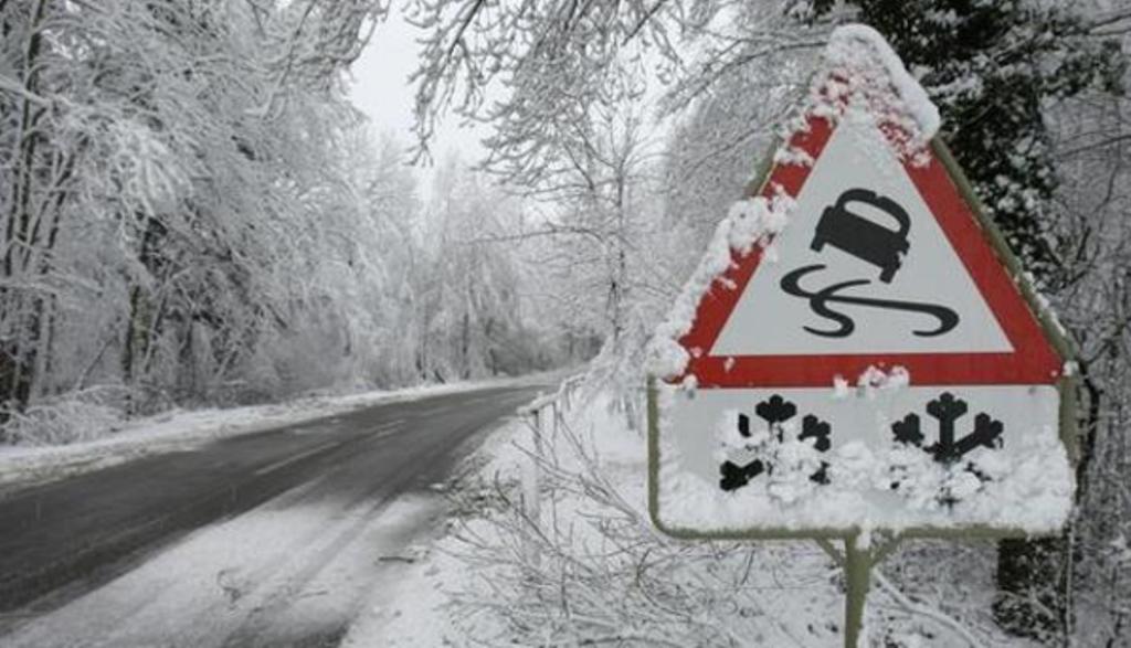Полтавські синоптики попереджають про ожеледь на деревах c7d821e45a39a